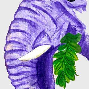 Saga de Juju: Elefante