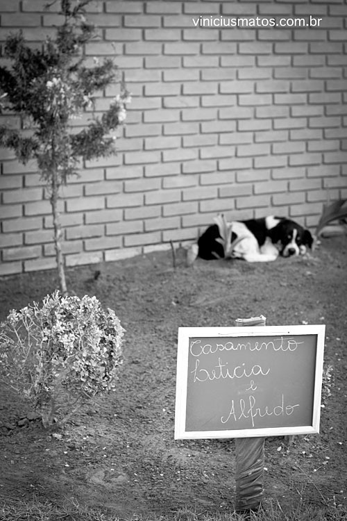 Contest Get Married in Daylight 2010