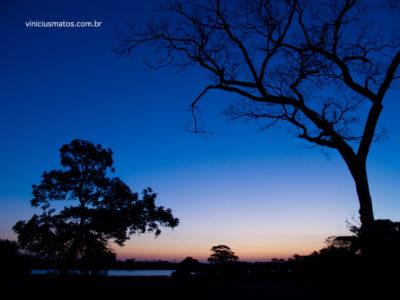 Workshop do Olhar IV - Pantanal