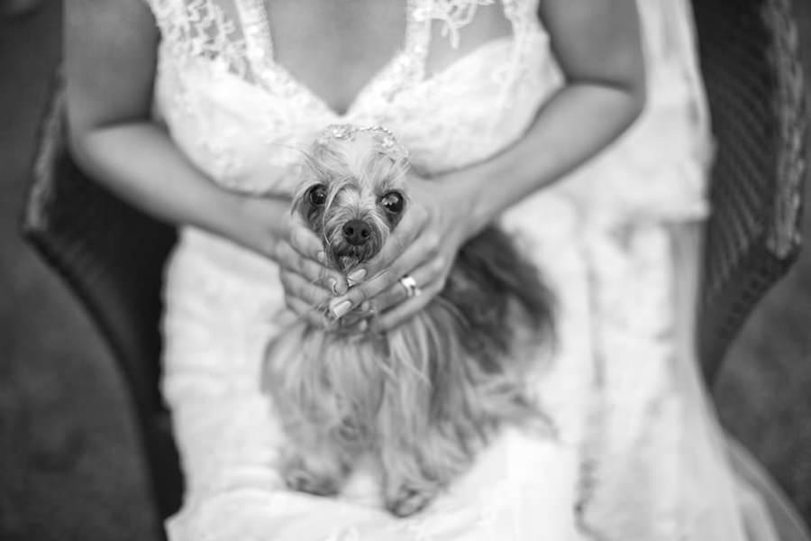 Casamento, Fotografia de Casamento, Belo Horizonte, Rio de Janeiro, Vinicius Matos